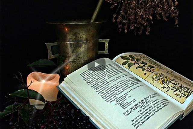 Permakultur – Leben in und mit der Apotheke Gottes