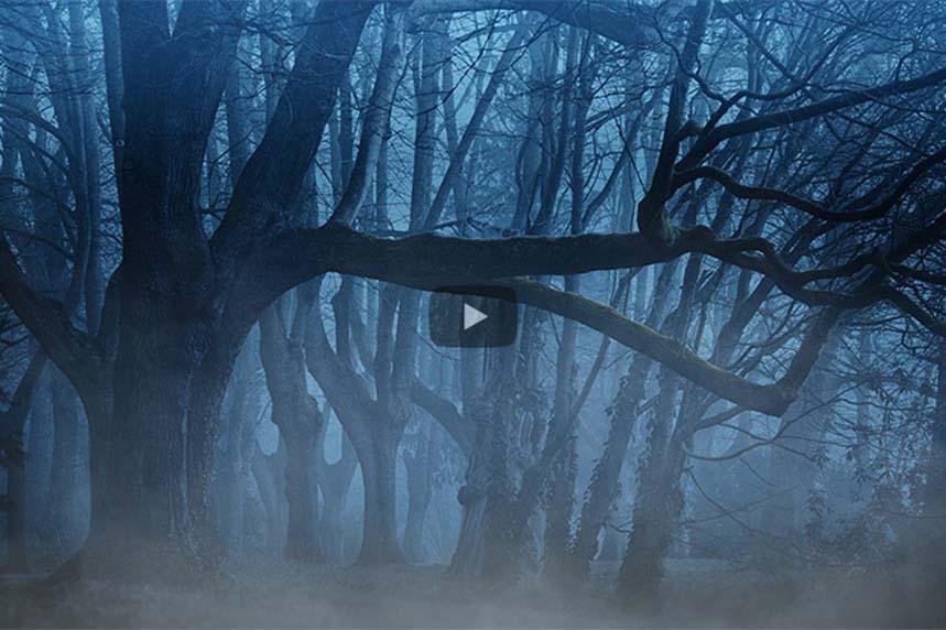 Geheimnis Nacht –  Fotokünstler Falk Ziebarth auf die Suche nach dem Licht in der Nacht