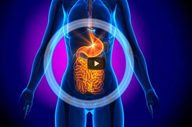 Geistig-Somatische Medizin. Diagnose & Therapie aus ganzheitlicher Sicht (Teil II)