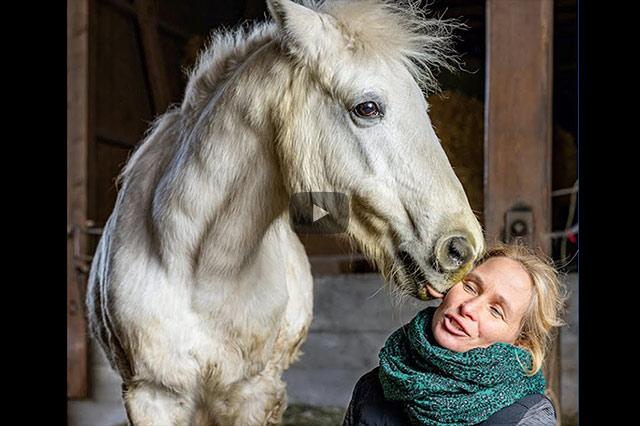 Sabine Betz: Pferd-Mensch-Beziehung richtig aufbauen